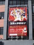 世界大学野球.JPG